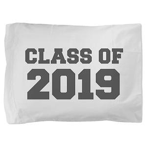 CLASS OF 2019-Fre gray 300 Pillow Sham