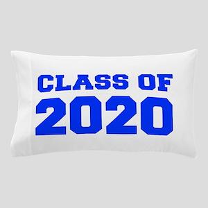CLASS OF 2020-Fre blue 300 Pillow Case