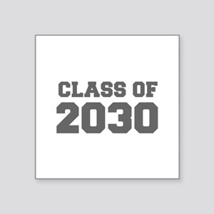 CLASS OF 2030-Fre gray 300 Sticker