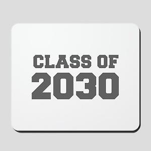 CLASS OF 2030-Fre gray 300 Mousepad