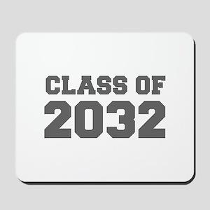 CLASS OF 2032-Fre gray 300 Mousepad
