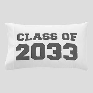 CLASS OF 2033-Fre gray 300 Pillow Case