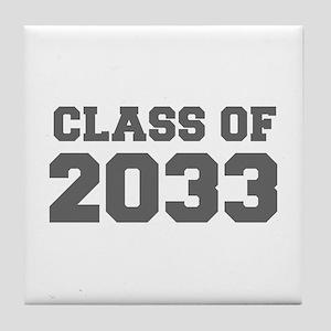 CLASS OF 2033-Fre gray 300 Tile Coaster