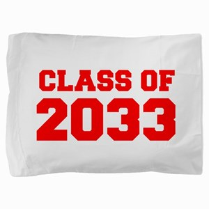 CLASS OF 2033-Fre red 300 Pillow Sham