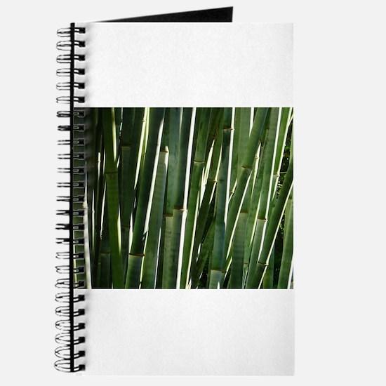 Bamboo Absrtact Journal