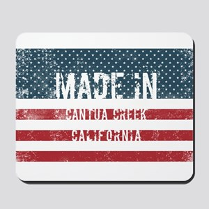 Made in Cantua Creek, California Mousepad