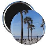 Hunting Island, SC Magnets