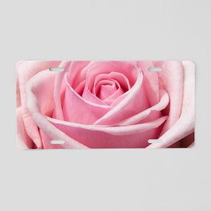 Light Pink Rose Close Up Aluminum License Plate