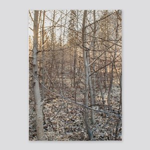 Leafless Forest at Sunset 5'x7'Area Rug