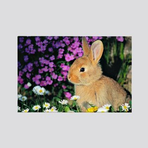 Bunny in Flowers Rectangle Magnet