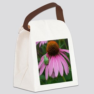 Tiny Frog on Echinacea Flower Canvas Lunch Bag