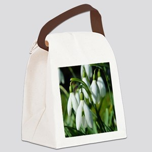 Snowdrops (flowers) Canvas Lunch Bag