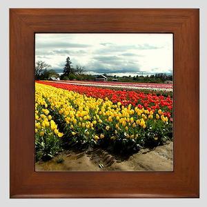 Rainbow Field Framed Tile