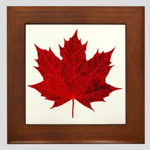 Vibrant Red Maple Leaf Framed Tile