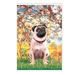 Spring / Pug Postcards (Package of 8)