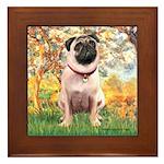 Spring / Pug Framed Tile