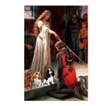 The Accolade & Cavalier King Trio Postcards (Packa