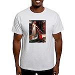 The Accolade & Cavalier King Trio Ash Grey T-Shirt