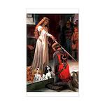 The Accolade & Cavalier King Trio Sticker (Rectang