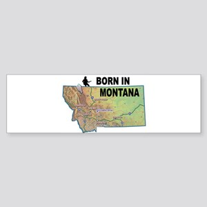 MONTANA BORN Bumper Sticker