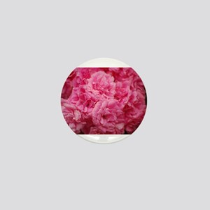 Pale pink roses Mini Button