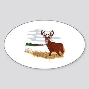 Whitetail Deer Scene Sticker