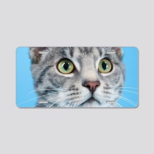 Beautiful Green Eyed Kitty Cat Aluminum License Pl