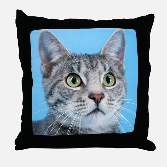 Beautiful Green Eyed Kitty Cat Throw Pillow
