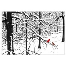 Snow Scene and Cardinals Poster