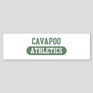 Cavapoo athletics Bumper Sticker