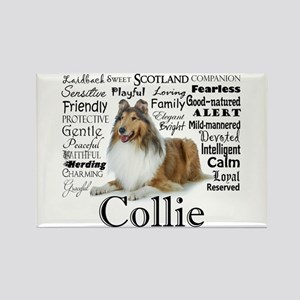 Collie Traits Magnets