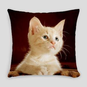 Cute kitten Everyday Pillow