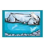 Goat-Glacier Postcards (Package of 8)