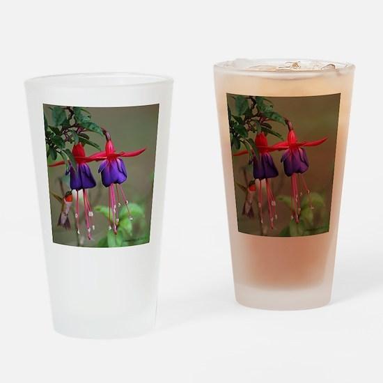 Fuchsia and Hummingbird  Drinking Glass