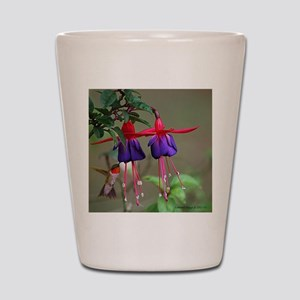 Fuchsia and Hummingbird  Shot Glass