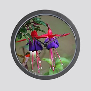 Fuchsia and Hummingbird  Wall Clock