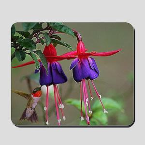Fuchsia and Hummingbird  Mousepad