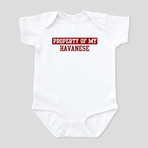 Property of Havanese Infant Bodysuit