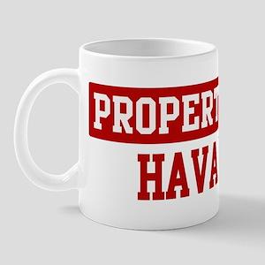 Property of Havanese Mug