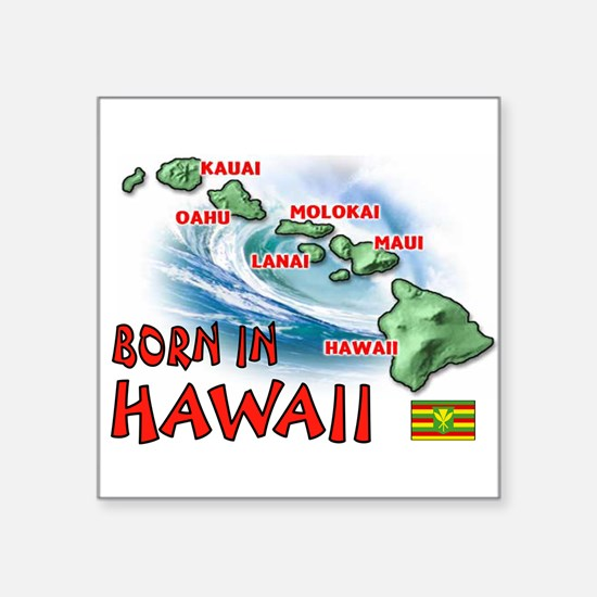 HAWAII BORN Sticker