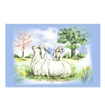 Goat-AngoraWithKid Postcards (Package of 8)