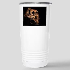 Paranthropus boisei skull Mugs