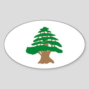 Cedar Tree Oval Sticker