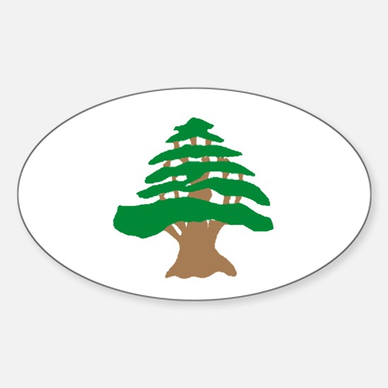 Cedar Tree Oval Decal