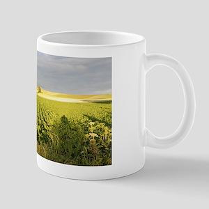 Camino green field Mugs