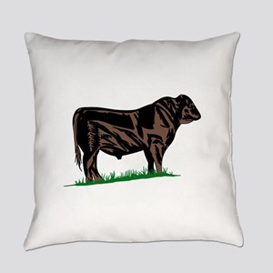 Black Angus Steer Everyday Pillow