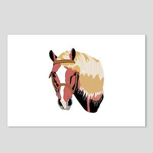 Haflinger Horse Postcards (Package of 8)