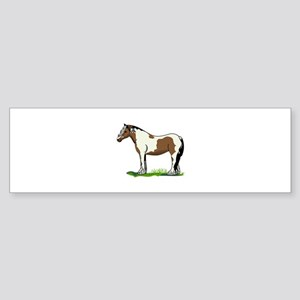 Gypsy Vanner Bumper Sticker