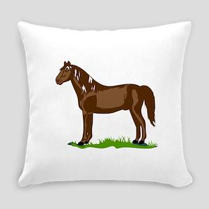 Morgan Horse Everyday Pillow