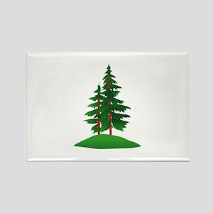 Evergreens Magnets